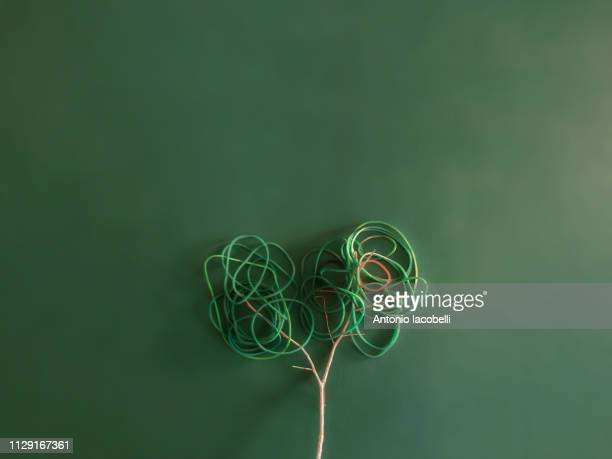lonely tree... - colore verde stock pictures, royalty-free photos & images
