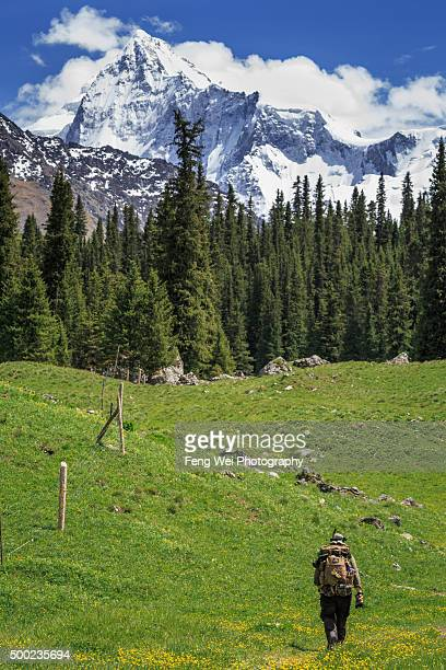 lonely trekker on xiate ancient trail, xinjiang china - tien shan mountains stock pictures, royalty-free photos & images
