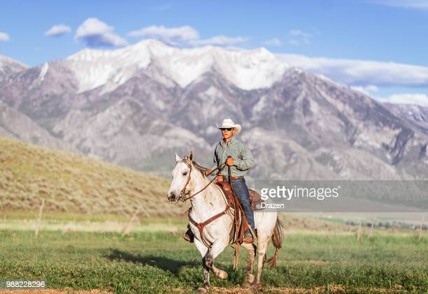 vaquero solitario montando su caballo en la naturaleza hermosa - caballo blanco fotografías e imágenes de stock