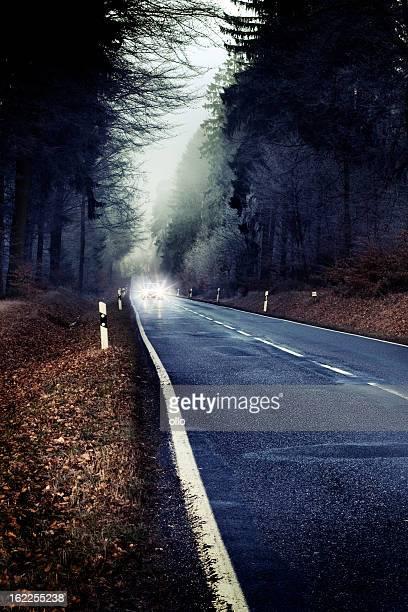 Solitaire forest road. Voiture avec les phares retournée