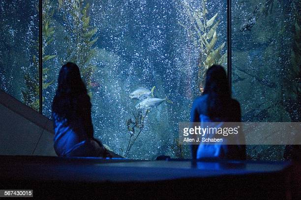 Long Beach Opera singer Peabody Southwell left and Ashley Knight right perform with a 142000–gallon fish tank as a backdrop in aíThe Paper Nautilusaì...