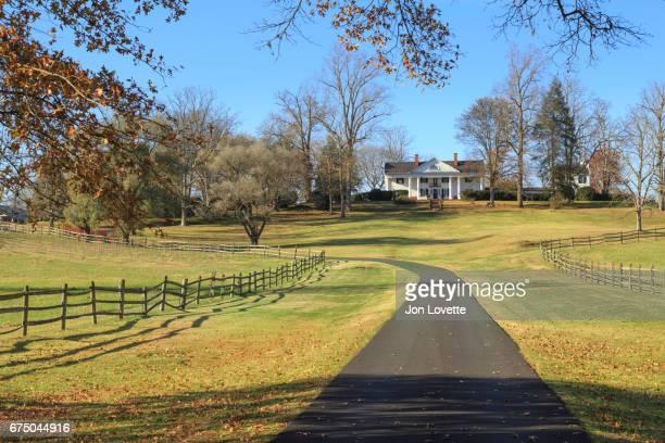 long driveway of virginia plantation - virginia amerikaanse staat stockfoto's en -beelden