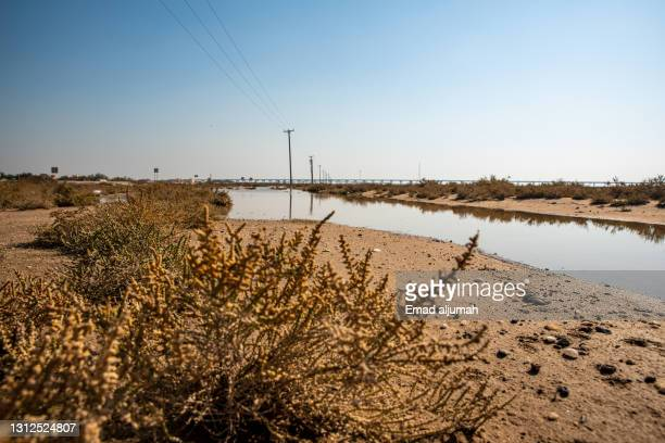 long dusky groundwater at khor al-sabiyah, kuwait city, kuwait - al khor ストックフォトと画像