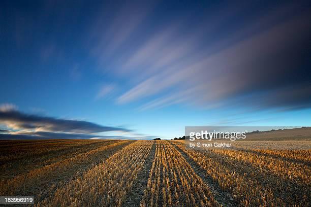 Long Exposure of a freshly Cut Wheat Field