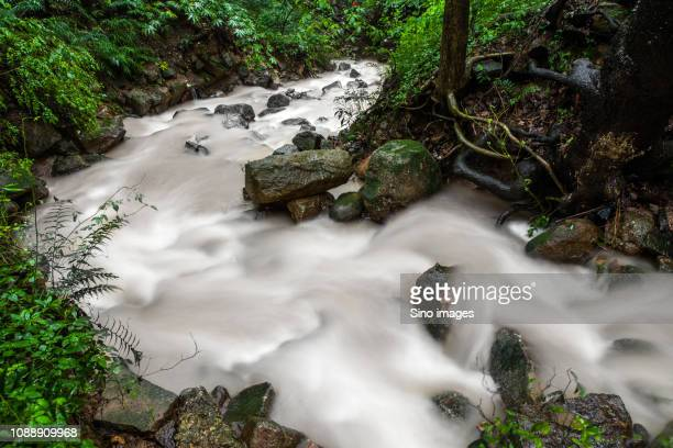 long exposure of forest stream, nanjing, jiangsu, china - image stockfoto's en -beelden