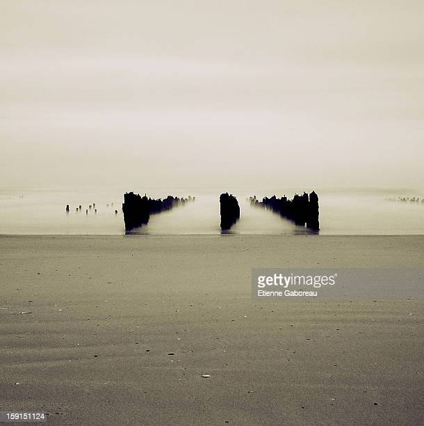 Long exposure of mussels farm sticks on the beach, in Normandy, France.