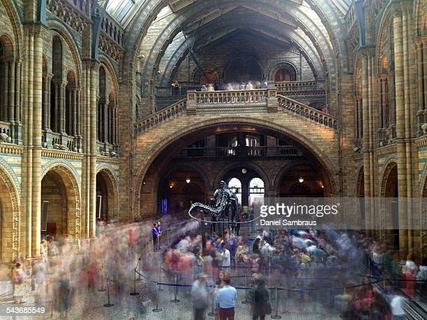 Long exposure of people queueing for the dinosaur exhibition The main hall of the Natural History Museum in London UK