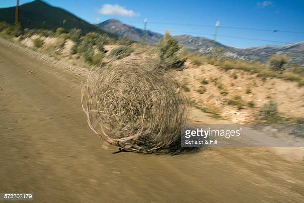 long exposure photography - tumbleweed stock photos and pictures