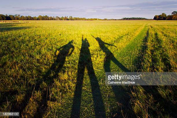 Long family shadows