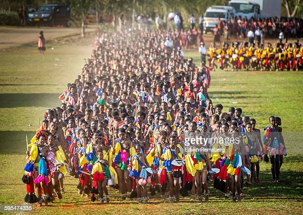 long march - reed dance stock pictures, royalty-free photos & images