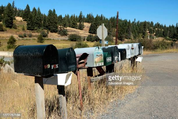 Long row of rural mailboxes along county road.