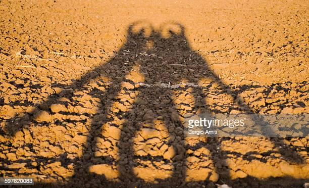 Long shadows of three men