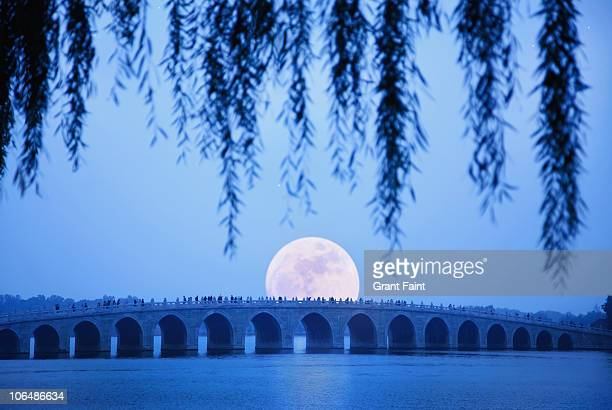 long shot of stone bridge at moonrise - ponte ad arco foto e immagini stock