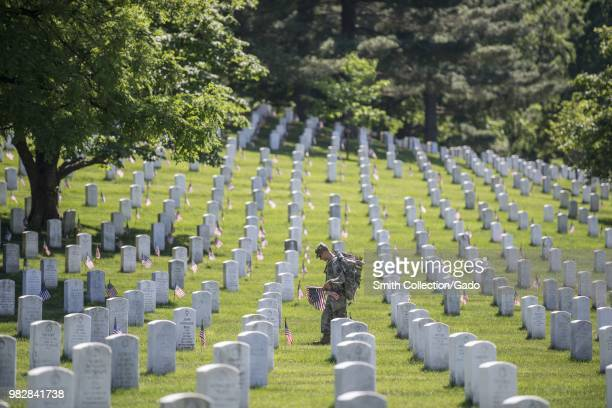 Long shot photograph of an Old Guard soldier placing American flags on headstones during the annual Flags In memorial ceremony Section 38 Arlington...