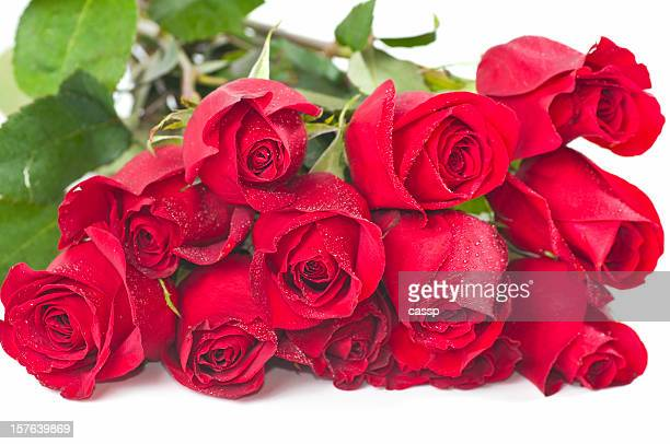 long stem red roses - dozen stock pictures, royalty-free photos & images