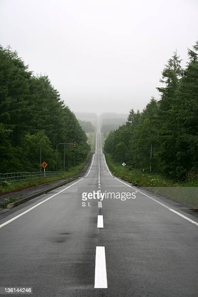 Long straight road disappears in mist
