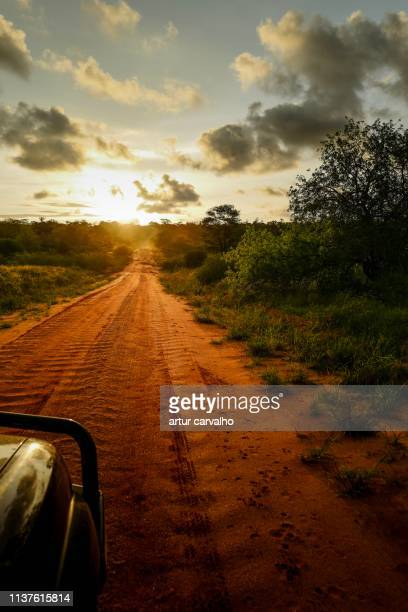 long way home - angola stock pictures, royalty-free photos & images