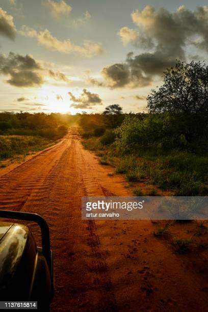 long way home - angola bildbanksfoton och bilder