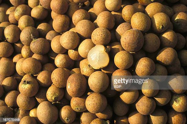 Longan Longan a sweet exotic vitaminpacked fruit also known as Dragon fruit