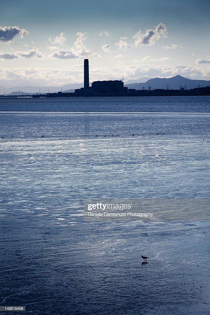 Longannet ccs power station : Stock Photo