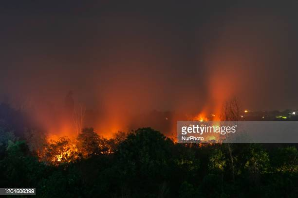Long-exposure photograph shows a Forest fire at Rumbai Pesisir village in Riau Province, Indonesia, on March 1, 2020. Indonesia's fires have been an...