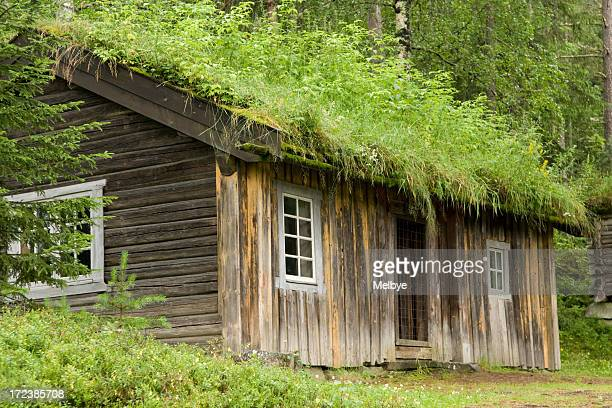 long-haired old house