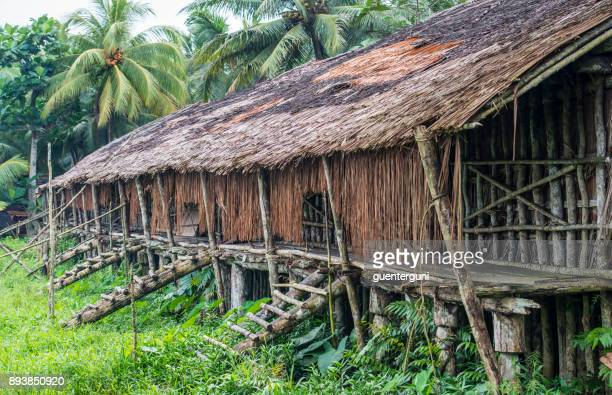 longhouse of the asmat people, west papua, newguinea - canibalismo imagens e fotografias de stock