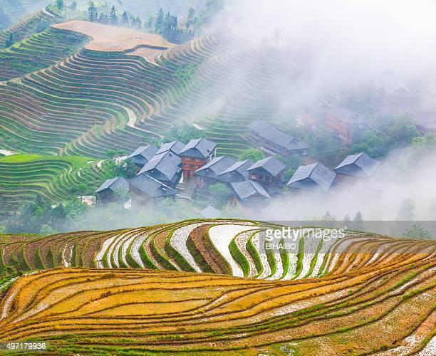 Longji campi terrazzati Longsheng, a Guilin, in Cina