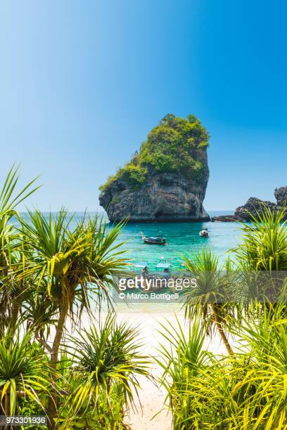 longtail boats moored in idyllic beach, thailand - thailand stock pictures, royalty-free photos & images