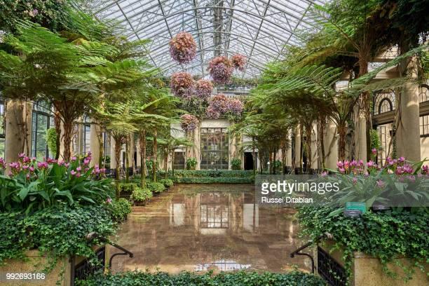 longwood gardens - gewächshäuser stock-fotos und bilder