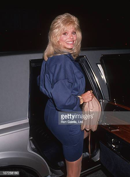 Loni Anderson during Loni Anderson Sighting at Los Angeles International Airport October 24 1991 at Los Angeles International Airport in Los Angeles...