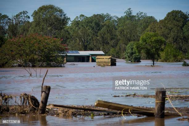 A looded Logan River caused by Cyclone Debbie is seen in North MacLean Brisbane on April 1 2017 Flooded rivers were still rising on April 1 in two...