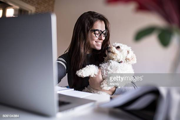 look at me little one. woman and her dog - pets stock pictures, royalty-free photos & images