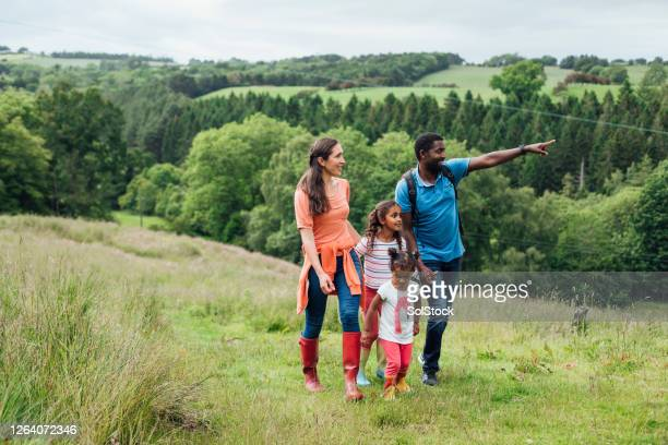 look at the view - multi ethnic group stock pictures, royalty-free photos & images