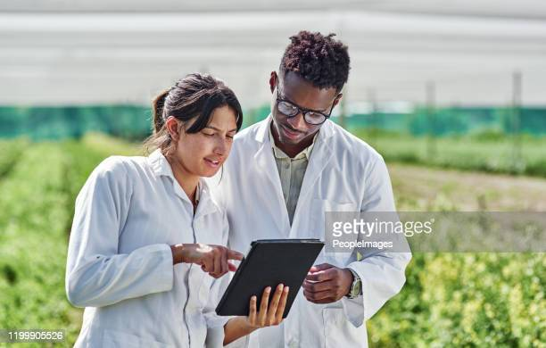 look at what i discovered earlier - agronomist stock pictures, royalty-free photos & images