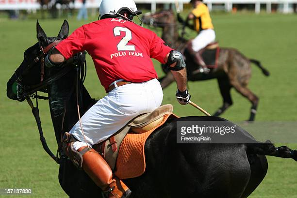 look for the ball - polo stock pictures, royalty-free photos & images