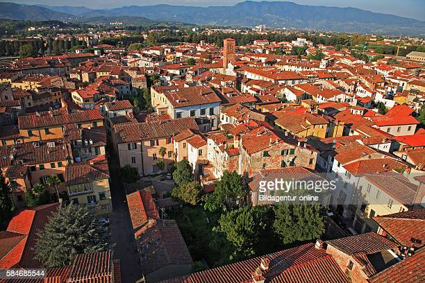 Look out over the city of Lucca of the tower of the Palazzo Guinigi Tuscany Italy