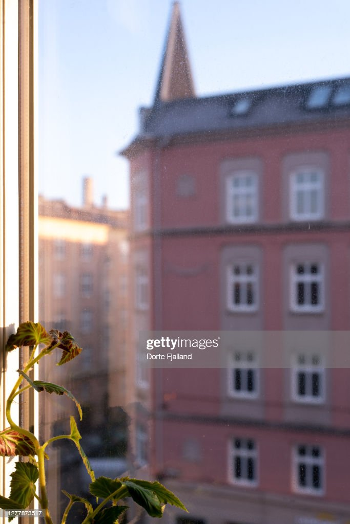 Look through a stained window on the pink facade of an apartment building : Foto de stock