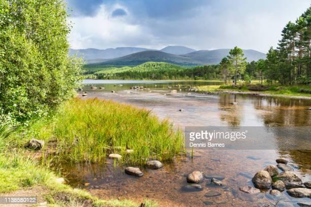 looking across loch morlich to cairngorms, aviemore, scotland, uk - 石塚 ストックフォトと画像