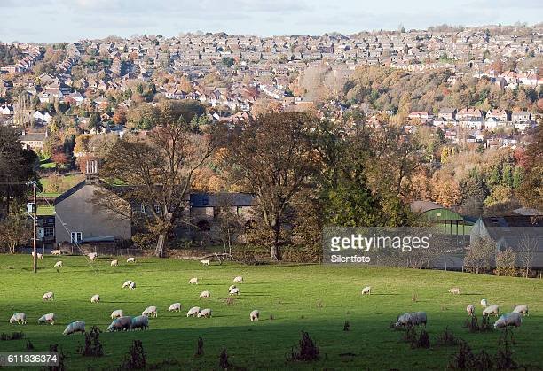 looking across mayfield valley to hallam - sheffield stock pictures, royalty-free photos & images