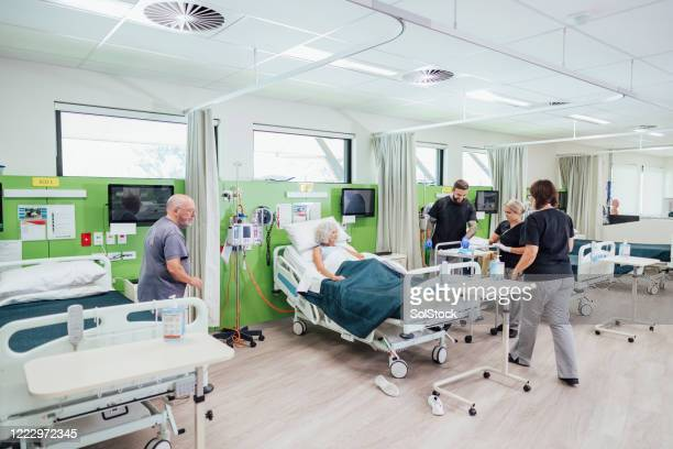 looking after the patients - ward stock pictures, royalty-free photos & images