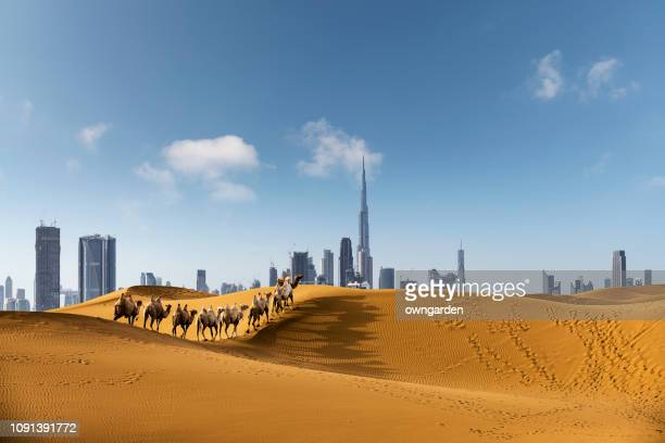 looking along desert towards the business district - middle east stock pictures, royalty-free photos & images