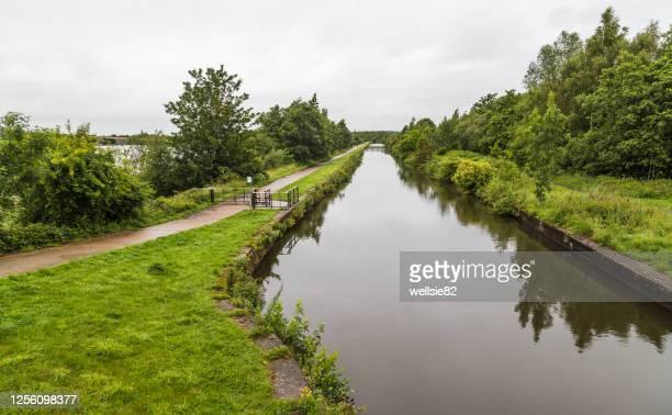 looking along the leigh branch of the leeds liverpool canal - porträt bildbanksfoton och bilder