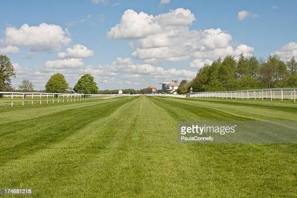Blick auf den York Racecourse