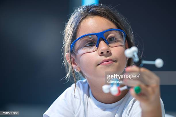 looking at molecular structure model. - stem stock photos and pictures