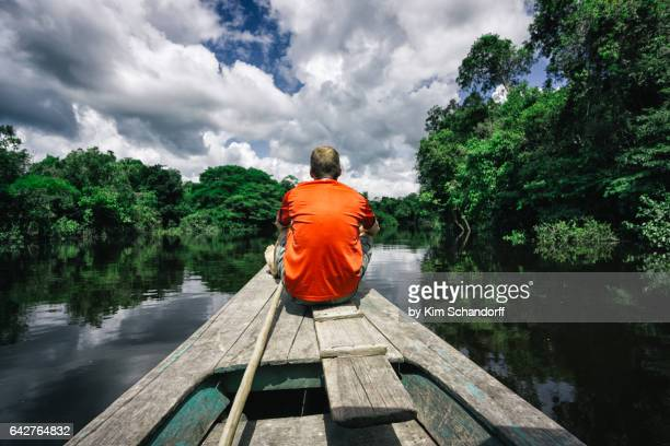 Looking at the Amazon rainforest from a boat