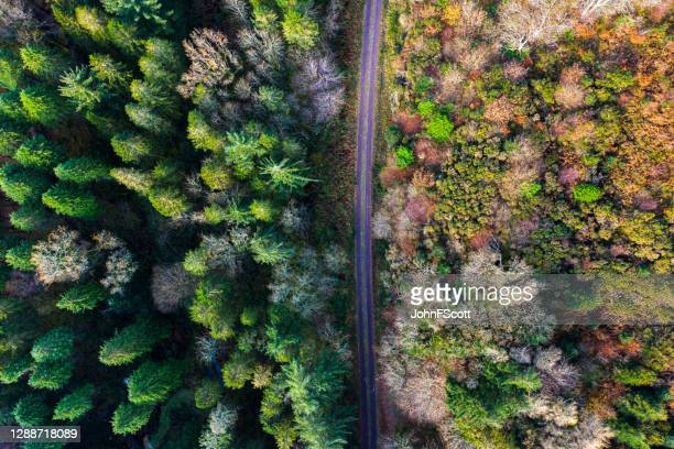 looking directly down on a rural road in rural south west scotland - drone point of view stock pictures, royalty-free photos & images