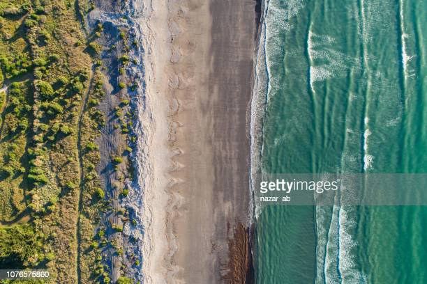 looking down at beach. - wellington new zealand stock pictures, royalty-free photos & images