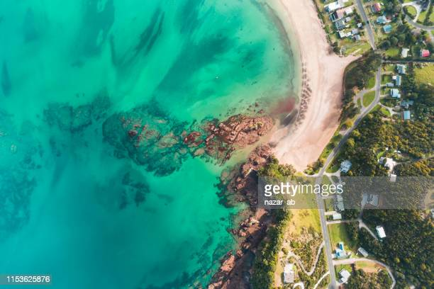 looking down at beach. - northland new zealand stock pictures, royalty-free photos & images