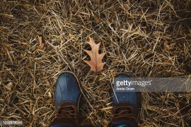Looking down at boots with a leaf between the feet